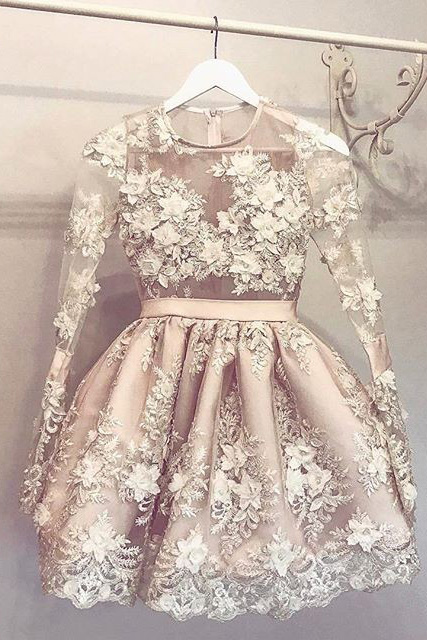 A-Line Homecoming Dresses,Round Neck Homecoming Dress,Short Homecoming Dress,Light Champagne Homecoming Dress with Appliques,Long Sleeves Homecoming Dresses,Homecoming Dress